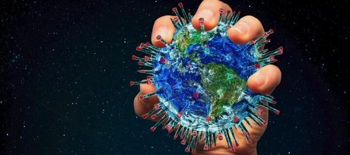 WHO-Experten: Coronavirus sprang von Fledermäusen auf Menschen über