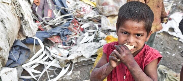 Friedensnobelpreis 2020 geht an UN-Organisation World Food Programme