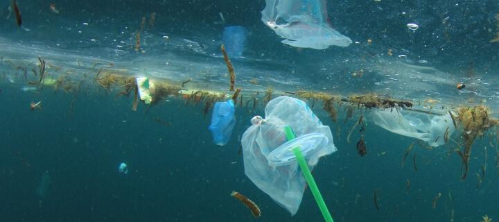 Umweltverschmutzung: EU-Parlament stimmt für Verbot von Wegwerfprodukten aus Plastik