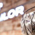 Chinesischer Investor Fosun will deutsches Modeunternehmen Tom Tailor übernehmen