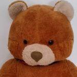 Ted – Ein Teddy stürmt die Kinocharts