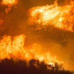 Brasilien-Waldbrände: EU-Staaten drohen mit Stopp des Mercosur-Abkommens